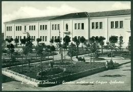 CARTOLINA - CV1840 SANT'ARSENIO (Salerno SA) Giardini Pubblici Ed Edificio Scolastico, Viaggiata 1955, Ottime Condizioni - Salerno