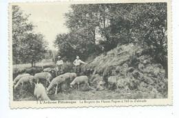 L'Ardenne Pittoresque -- La Bergerie Des Hautes Fagnes, à 560 M. D'altitude - Waimes - Weismes