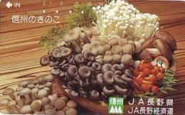 Télécarte Japon * CHAMPIGNON * Telefonkarte (194) MUSHROOM * Japan Phonecard * PADDESTOEL * FUNGO * SETA * PILZ - Alimentation