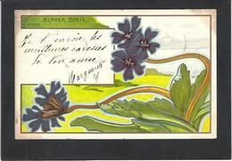 CPA Hofer Art Nouveau Circulé En 1900 Voir Scan Du Dos Type Combaz - Illustrators & Photographers