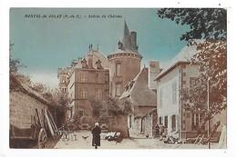 MONTEL De GELAT  (cpa 63)  Entrée Du Château   -  L 1 - France