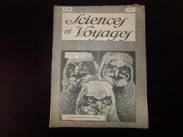 """Revue """" Sciences Et Voyages """" N° 471 Du 6 Septembre 1928 """" L'étrange Physionomie Des Hulottes  """" - 1900 - 1949"""