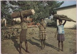 CPM - VAVOUA - ENFANTS Avec CHARGE De BOIS - Edition Chapeau - Côte-d'Ivoire
