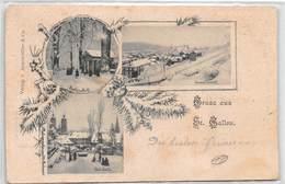 Gruss Aus St. Gallen - Partie Im Park Ost-Seite - General Ansicht - 1898 - SG St. Gallen