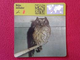 ESPAGNE SPAIN FICHA SHEET FICHE ANIMALES ANIMAL FAUNA WILDLIFE BIRD BÚHO LECHUZA O SIMIL OWL HIBOU BÚHO AULLADOR BIRDS - Animales