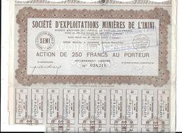 STE Exploitations Minières DE L'ININI (Cayenne) Action De 250 Francs Au Porteur - Actions & Titres