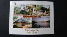 South Africa - Krüger National Park - Crocodile Bridge Camp - Um 2000 - Look Scans - Sudáfrica