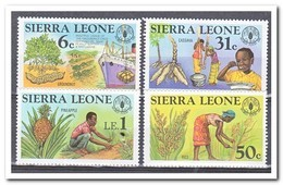 Sierra Leone 1981, Postfris MNH, Agriculture - Sierra Leone (1961-...)