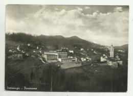 PETTINENGO - PANORAMA - VIAGGIATA  FG - Vercelli