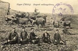 Grèce - A Identifier - Greece