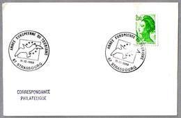 AÑO EUROPEO DEL TURISMO - European Year Of Tourism. Strasbourg 1989 - Vacaciones & Turismo