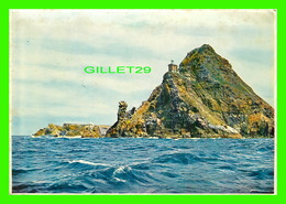 CAPE POINT, SOUTH AFRICA - TRAVEL IN 1987 - - Afrique Du Sud