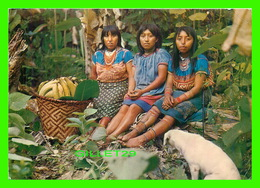 CHOCO, COLOMBIA - GROUP OF CHOCO INDIAN GIRLS IN THEIR TYPICAL COSTUMES - TRAVEL IN 1972 - FOTORAMA - - Colombie