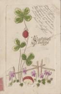 Fantaisies - Souvenir D'amitié - Coccinelle Trèfle Champignon - Carte Gaufrée - Correspondant Eclusier à Bourré 41 - Fancy Cards