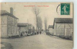 36201 - BALIGNICOURT - ROUTE DE CHAVANGES - France