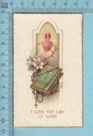 NB 5067 - Gold Print, Coeur Flambant S. Regule -  Image Pieuse, Religieuse, Holy Card, Santini - Images Religieuses