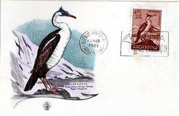 ARGENTINA,   FDC,    Bird     /     ARGENTINE,   Lettre De Première Jour,   Oiseaux,     1961 - Oies