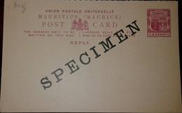 L) 1902 MAURITIUS, SPECIMEN,  8C, RED, SHIELD, KEY, BOAT, PALM, POSTCARD,XF - Mauritius (1968-...)
