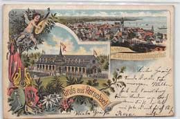 Gruss Aus Rorschach - 1901 - XI St. Gall. Kantonalsängerfest - Litho - SG St. Gallen