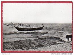 CPSM 11 GRUISSAN La Plage  ( N° 25566 )  * Format CPM Barque Carte Des Années 1960 - Sonstige Gemeinden