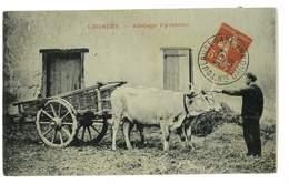 CPA 65 LOURDES ATTELAGE PYRENEEN - Lourdes