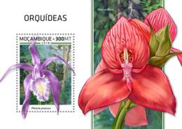 Mozambique  2018   Orchids    S201812 - Mosambik