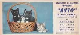 Buvard Chat Chaton / Lot De 2 / Chaussons ASTO / 87 St Just Le Martel / Et Publicité Pétrole Hahn - Animaux