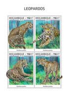 Mozambique  2018   Leopards   Fauna  S201812 - Mozambique