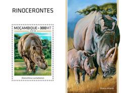 Mozambique  2018 Rhinos  Fauna  S201812 - Mozambique