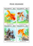 Mozambique  2018  Goldfish  Fauna  S201812 - Mozambique