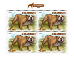 Mozambique  2018  Dogs Fauna  S201812 - Mozambique