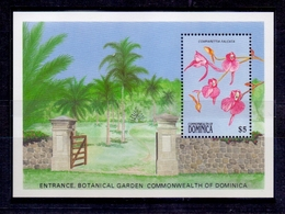 Orchideen – Dominica (101-116) - Orchids
