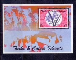 Orchideen – Turks- Und Caicos-Inseln (103-116) - Orchideen