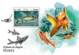 Angola 2018  Fauna  Fishes - Angola
