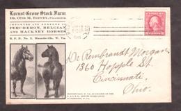USA - 1915 - Enveloppe Illustration Publicitaire Cheval / Horse - Percheron - Moundsville (W.Va) Pour Cincinnati (Ohio) - Lettres & Documents