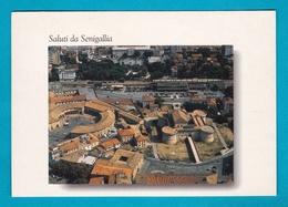 Senigallia - Saluti Da - Viaggiata - Senigallia