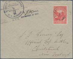 Thematik: Antarktis / Antarctic: 1911/1914, Australian Antarctic Expedition, Tasmania 1 D Carmine Pi - Sonstige