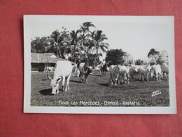 RPPC    BY Flatau------Finca Las Mercedes  Panama   Ref 3145 - Animals