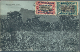 Ruanda-Urundi - Belgische Besetzung Deutsch-Ostafrika: 1918 Registered Picture Post Card Of 'Jungle, - Ruanda-Urundi