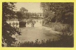 * Gaasbeek - Gaesbeek (Lennik - Vlaams Brabant) * (Nels, Nr 29) Kasteel Van Gaasbeek, Chateau De Gaesbeek, étang, Vijver - Lennik