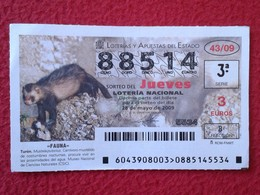 SPAIN DÉCIMO CUPÓN DE LOTERÍA LOTTERY LOTERIE ANIMAL FAUNA WILDLIFE TURÓN MUSTÉLIDO POLECAT FERRET FITCH VER FOTOS Y DES - Billetes De Lotería