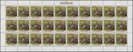 Cook-Inseln: 1984, Cnidaria, 1c. To 48c., 15 Values Issued On 23 March, 180 Copies Each Within (fold - Cookinseln