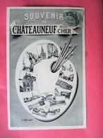 Souvenir De CHATEAUNEUF Sur CHER - Multivues Dans Une Palette De Peintre - Voyagé En 1905 - Chateauneuf Sur Cher