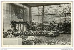 PARIS EXPOSITION INTERNATIONALE 1937. Pavillon Belgique (dentelé) - Exhibitions