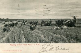 CANADA(AGRICULTURE) REAPING(BATTEUSE) - Canada