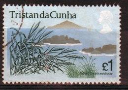 Tristan Da Cunha 1972 Single £1 Fine Used Stamp From The Flowering Plants Set. - Tristan Da Cunha