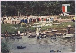CPM - ABIDJAN - LAVEURS Du BANCO - Photo P.Chareton - Côte-d'Ivoire