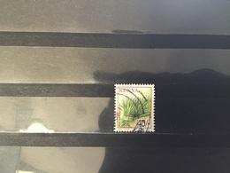 Kenia - Gewassen (40) 2001 - Kenia (1963-...)
