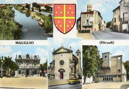 -  MAUGUIO -  Multivues  -17590- - Mauguio