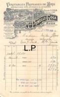 29-0348    1926 VERITABLES FROMAGES DE BRIE MAISON PENELLE GOGA A AVON - M. MILOU A TRIE SUR BAISE - France